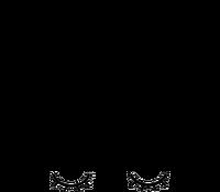 Logotipo de Janine Araujo Fotografia