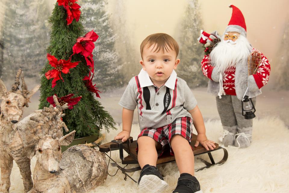 mini sessão de natal