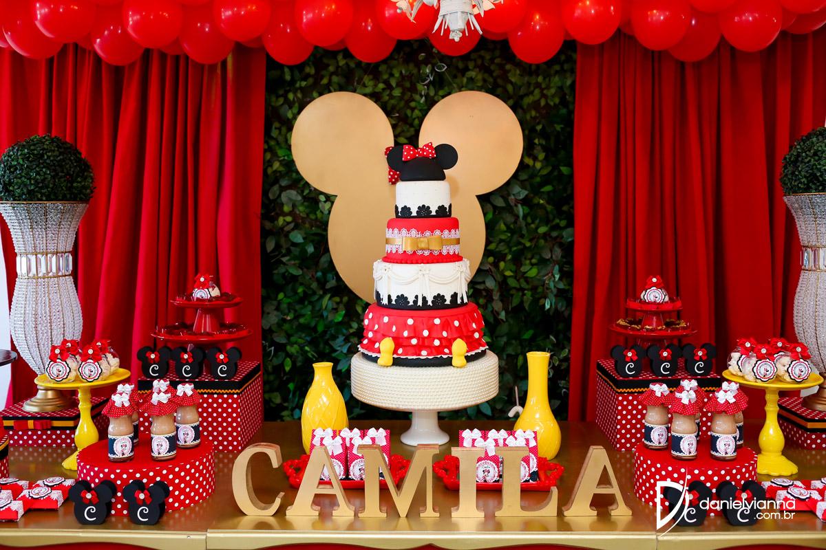 Foto de Aniversário 1 Ano Camila