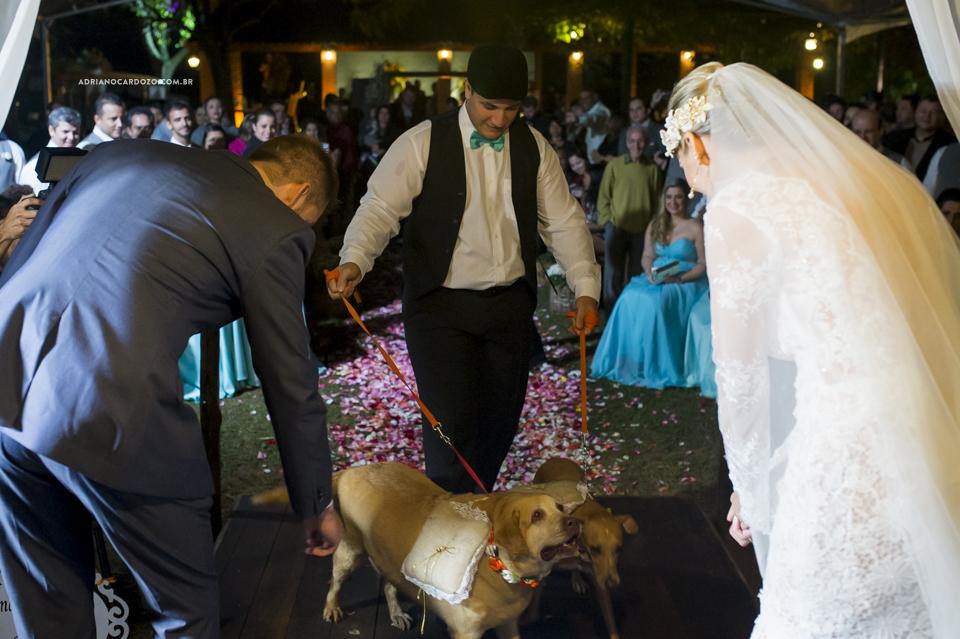 Entrada das alianças com cachorro. Cerimônia de Casamento no Sítio Bom Tempo em MIguel Pereira por Adriano Cardozo
