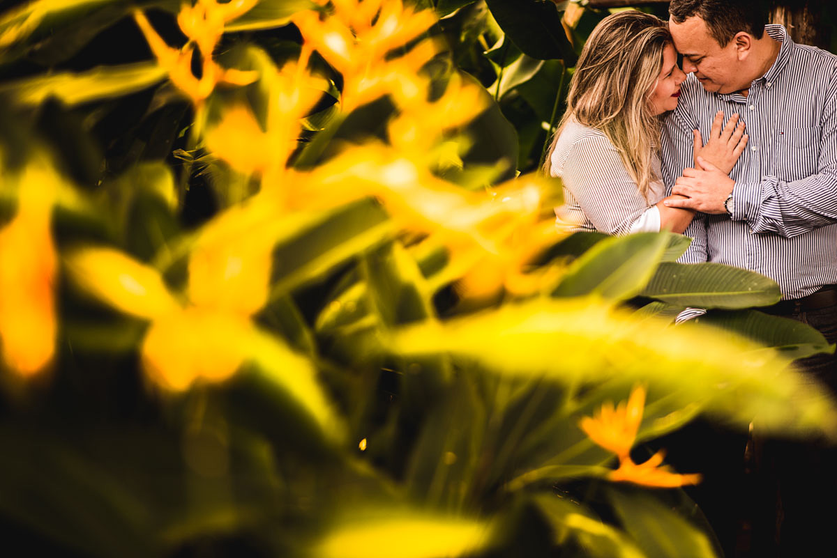 casal de noivos no mangal em belem