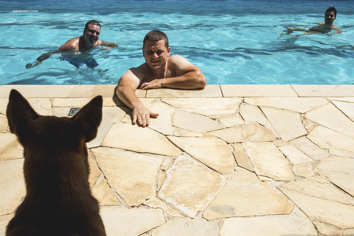 cachorro noivo piscina