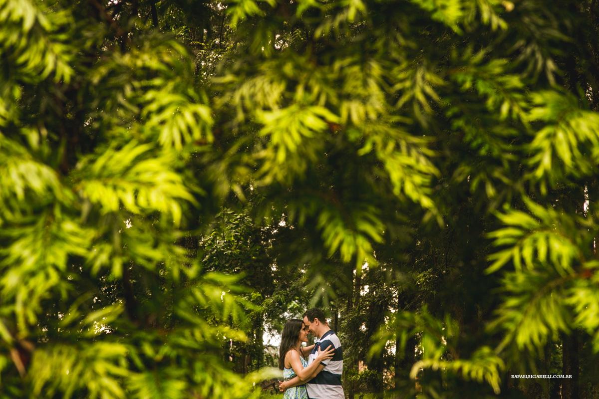 noivos no parque das grevilleas em Maringá - pR