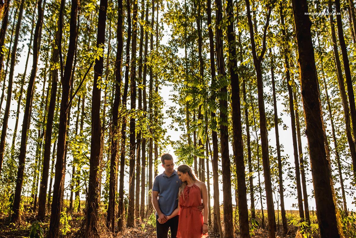 fotos de noivos na plantação de eucalipto