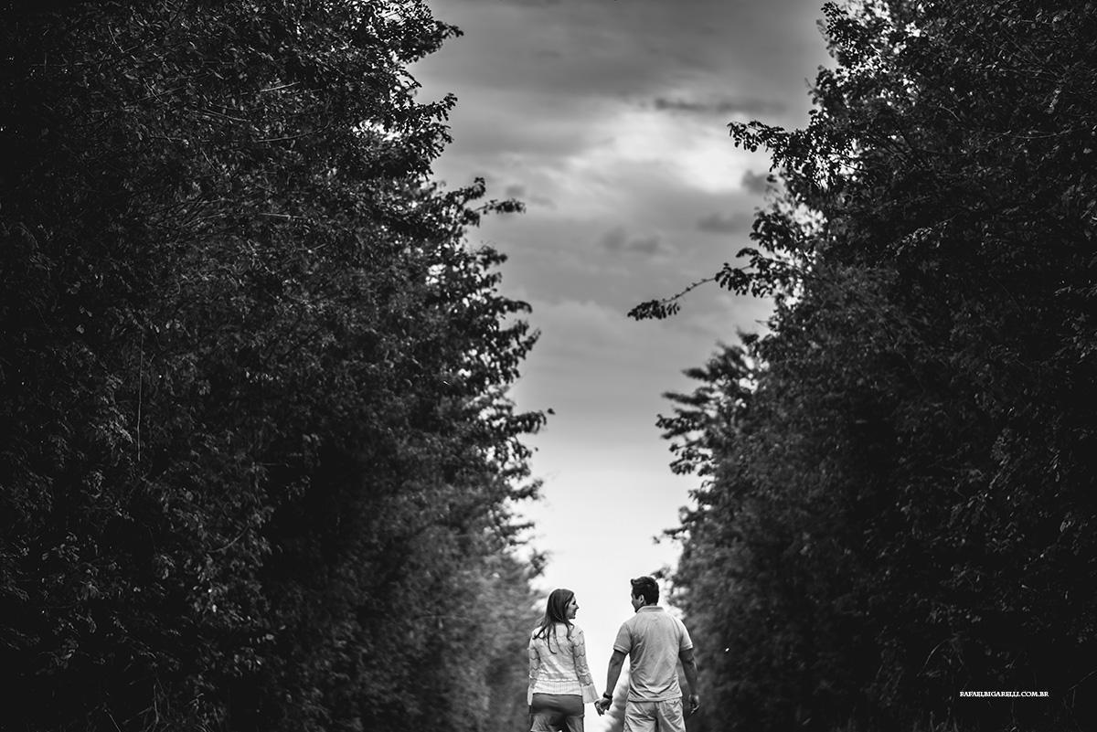 sessao de pre casamento na natureza