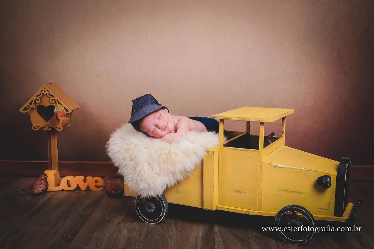 Book bebê Newborn