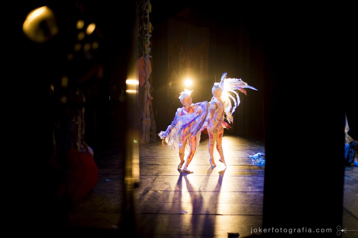 Bailarinos caracterizados de pássaros