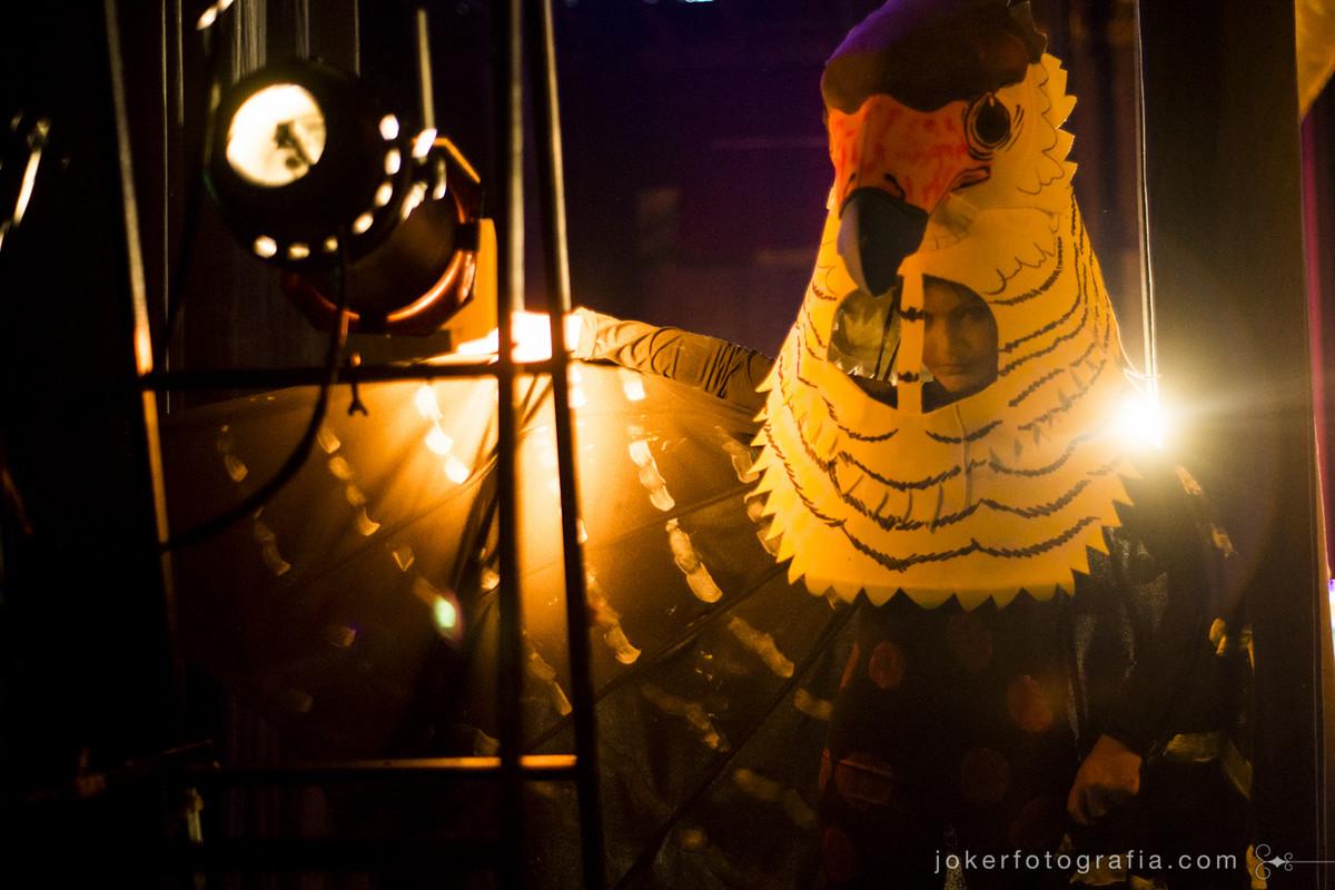 figurinos de aves para apresentação de teatro infantil