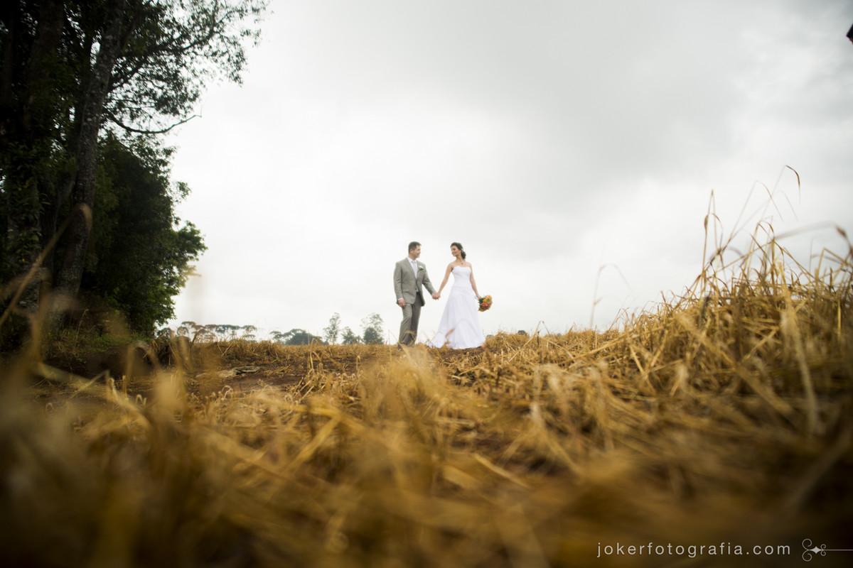 ensaio na plantação de trigo