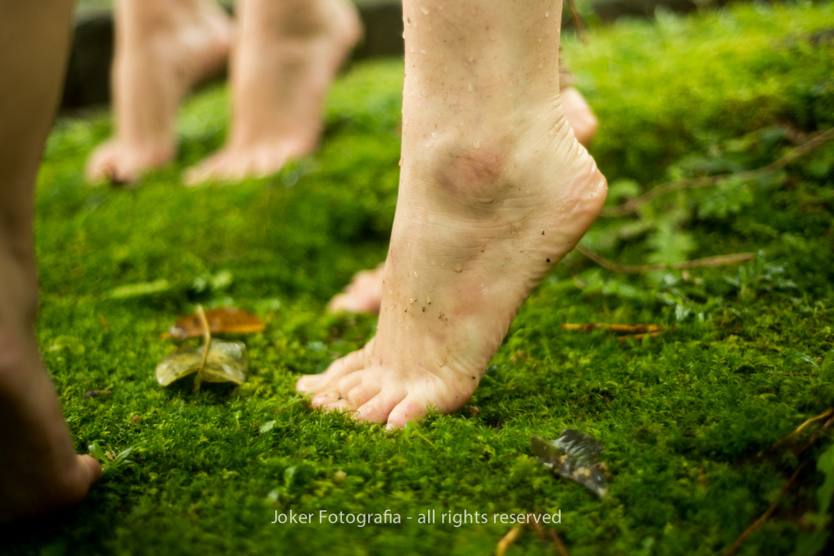 ensaio externo de ballet na natureza