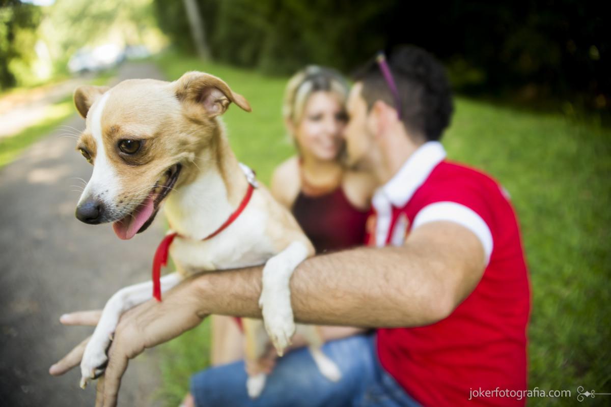 013_fotografo_pre_wedding_curitiba_pre_casamento_ensaio_cachorro