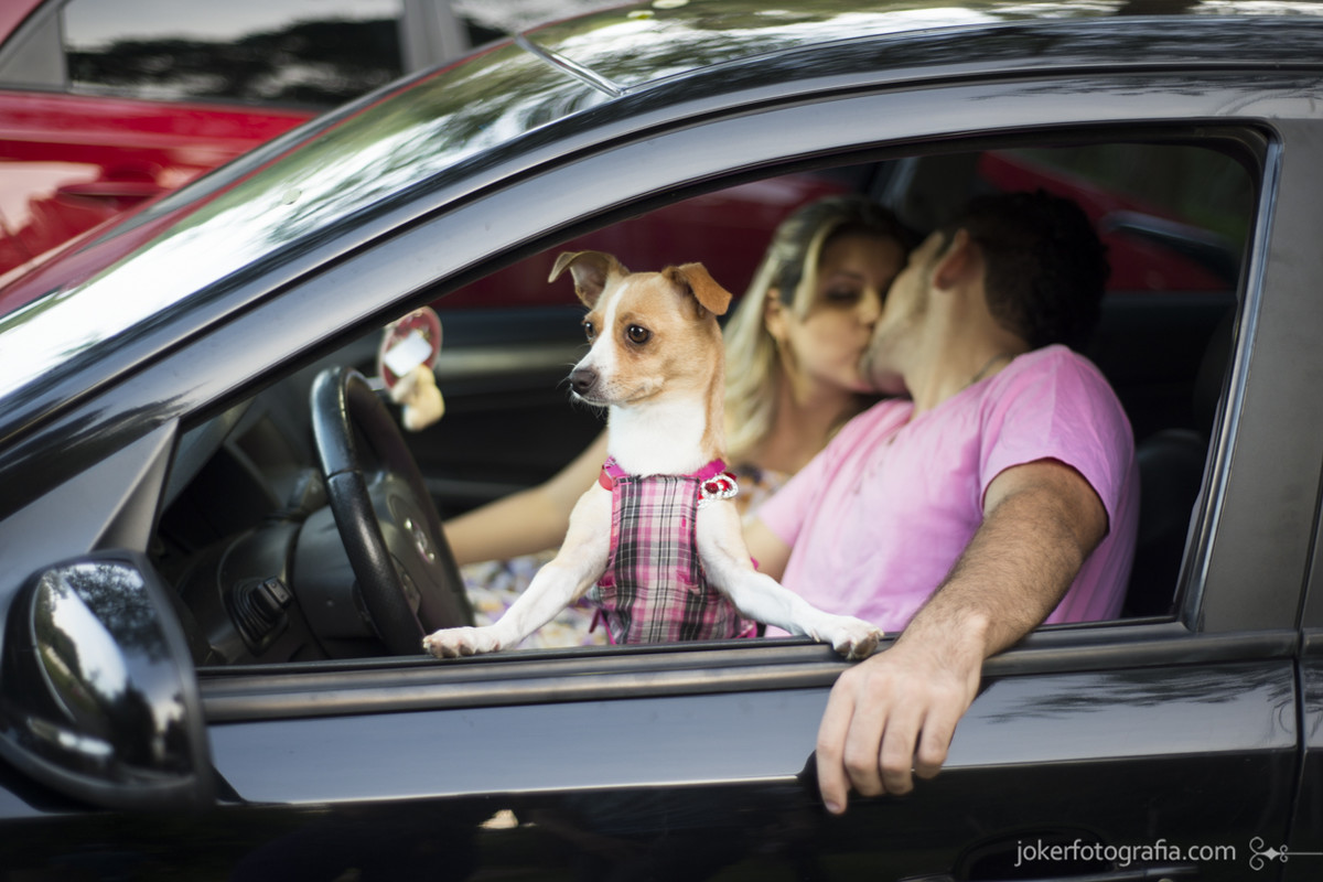 027_ensaio_casal_pre_wedding_cachorro_carro