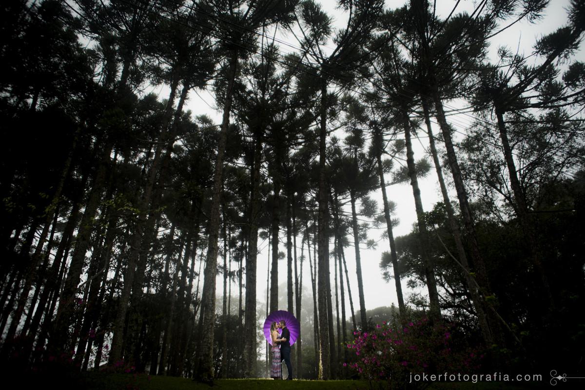 fotografia de casamento premiada de ensaio com guarda chuva em um bosque de araucarias num dia chuvoso