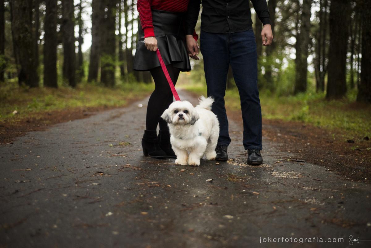ensaio de casal com cachorro ensaios