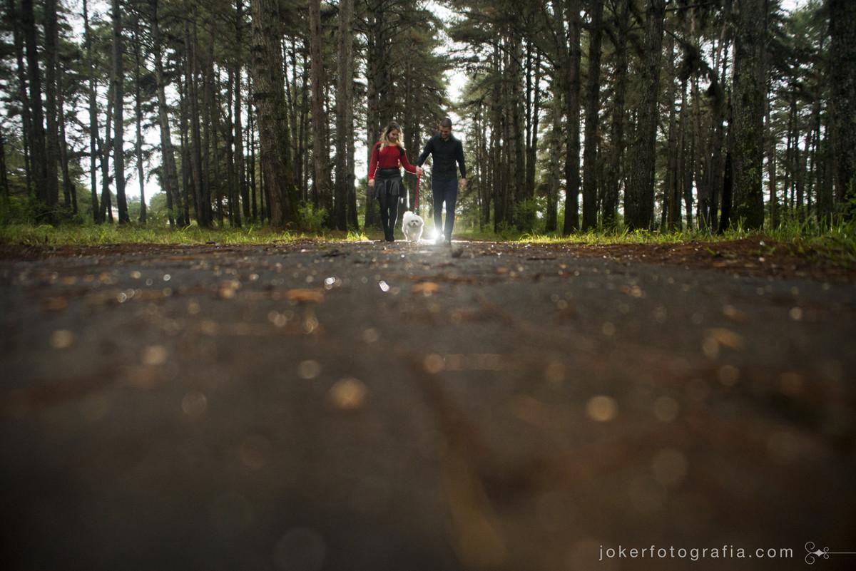 idéias de lugares criativos e com natureza para fazer seu ensaio em curitiba onde fotografar meu ensaio pre-wedding