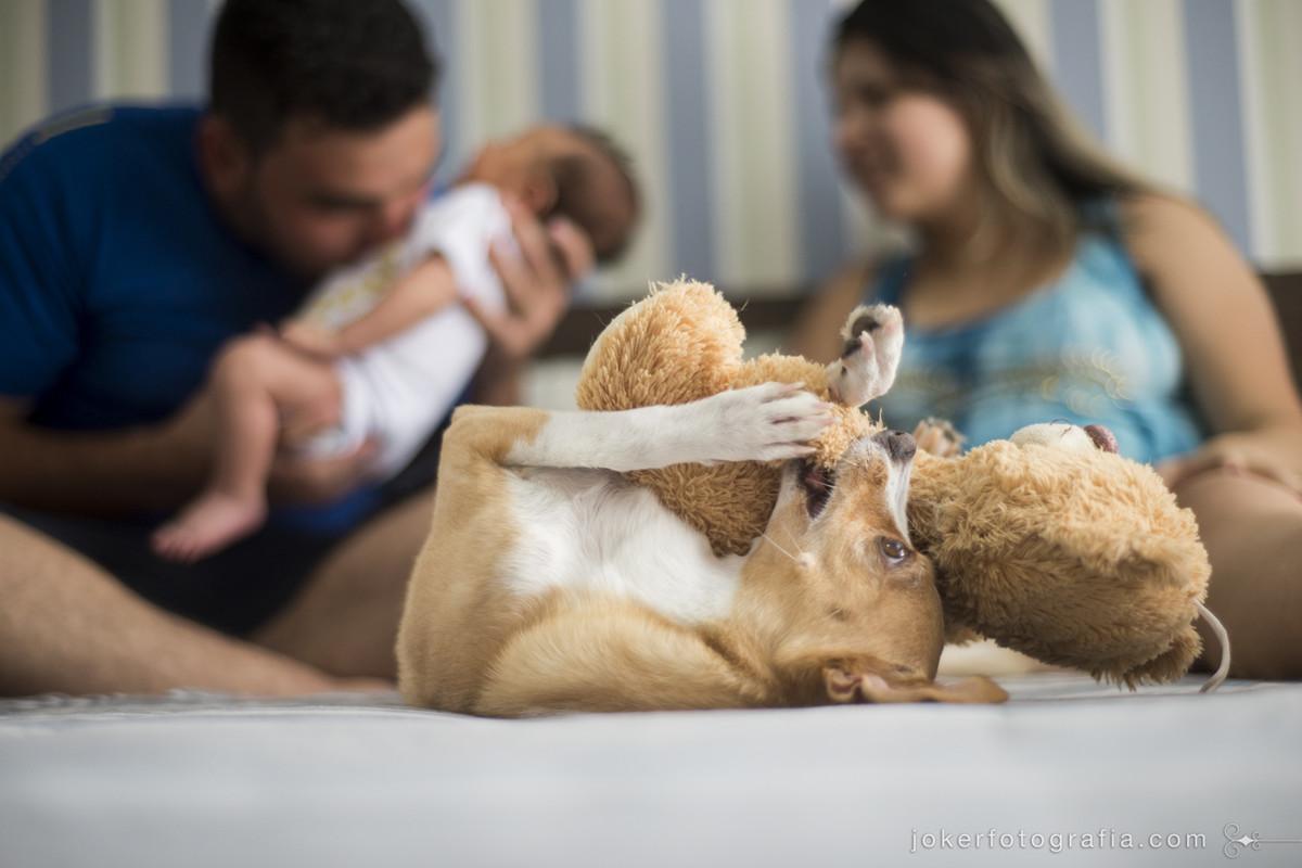 ensaio de casal com filho e cachorro em casa
