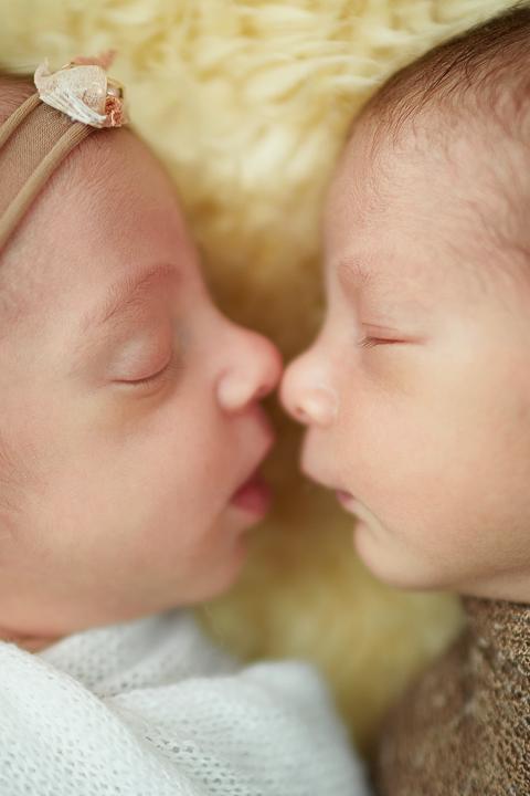 newborn gêmeos rj