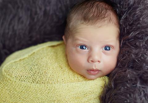 ensaio newborn de Ensaio Newborn do José