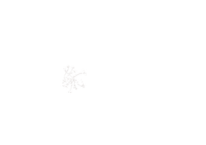 Logotipo de Aline Lelles