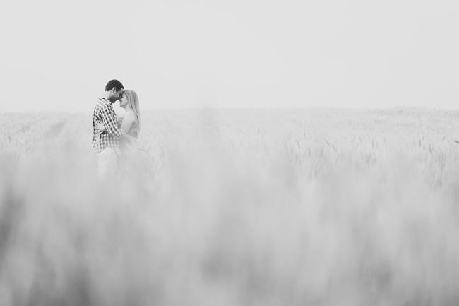 pré-casamento plantação trigo campo alegre chroma fotografia