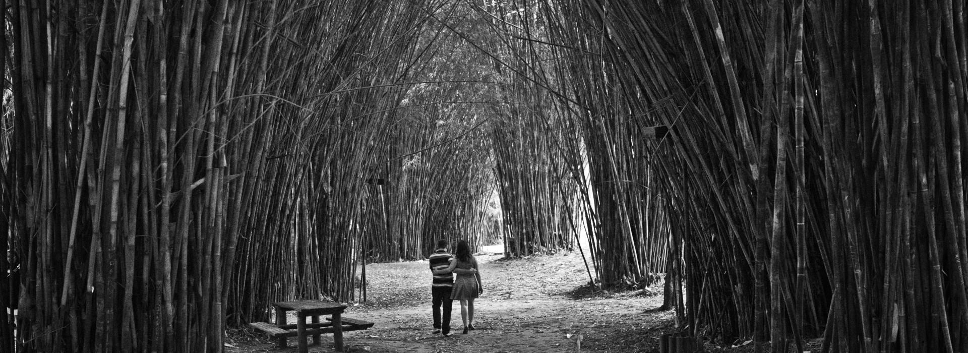 Ensaio de Cesar e Mariana em Jaguariúna - SP