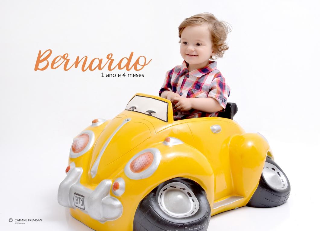 Foto de Bernardo - Acompanhamneto