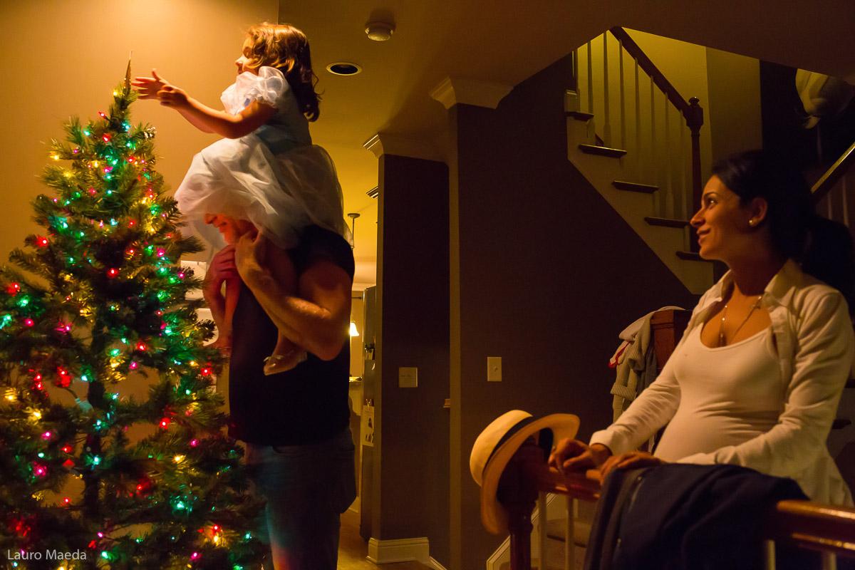 Família Laub montando a árvore de Natal