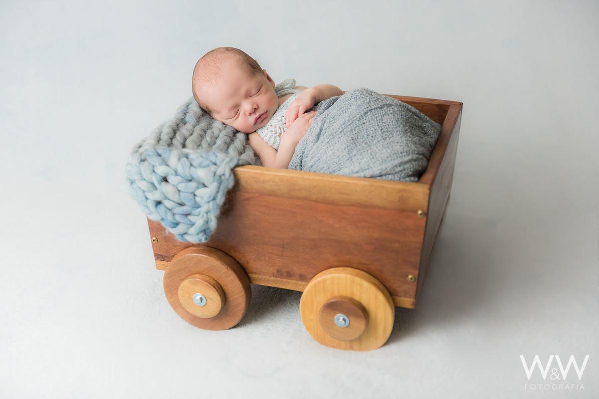 ensaio newborn menino osasco sp recém nascido