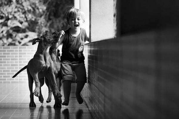 Documental de Família de Fotografia