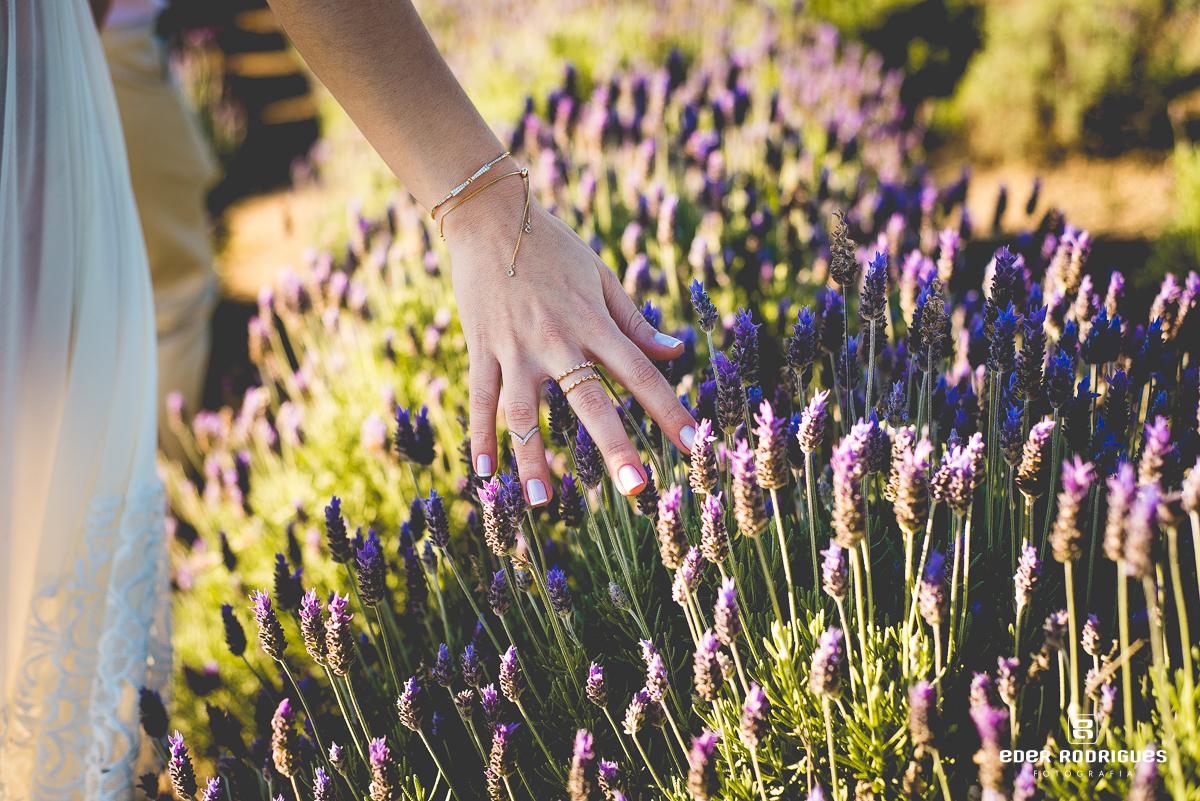 Gestante nas flores de lavanda