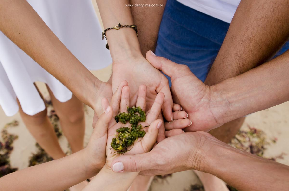 maos unidas com uma alga fazendo alusão ao filho e irmão que vai chegar