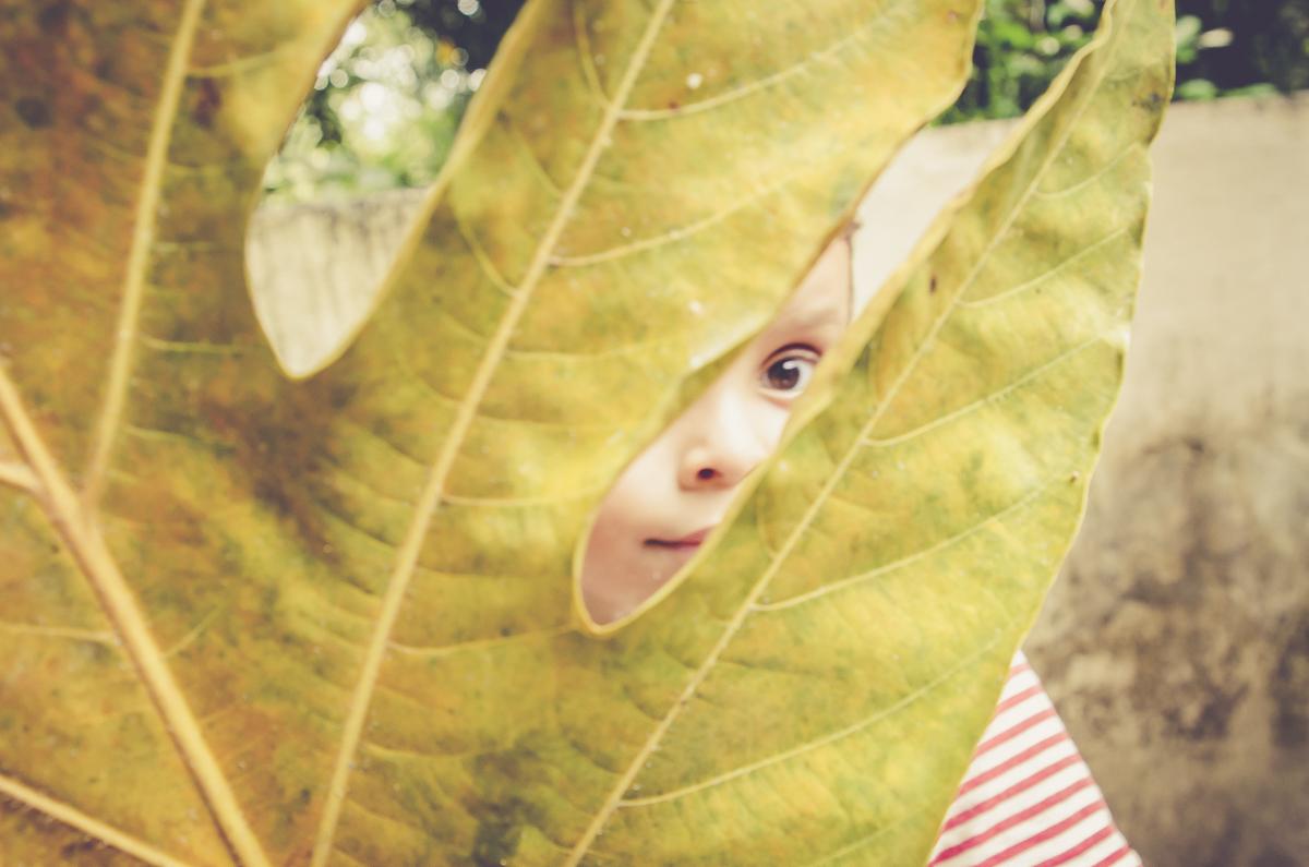 menino nas folhas
