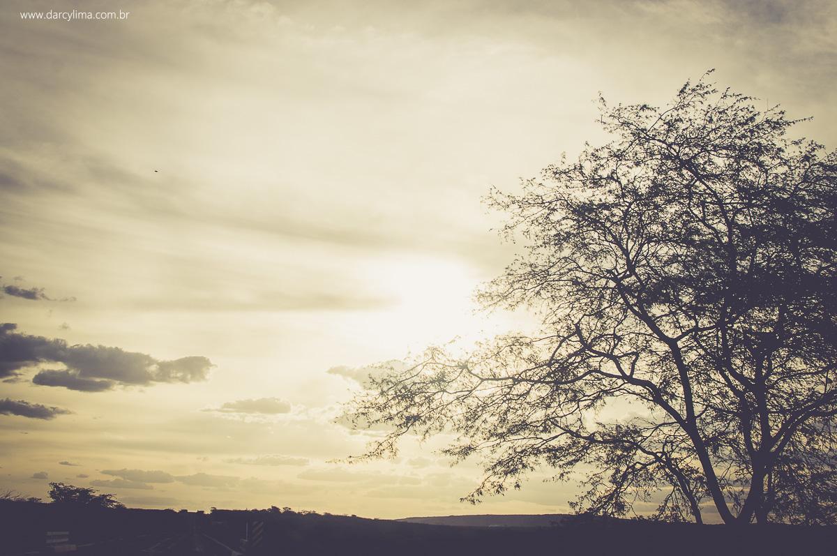 paisagem do cariri paraibano