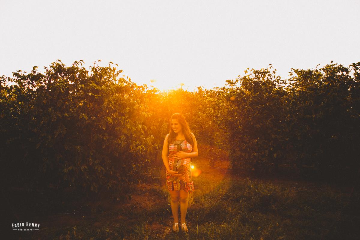 foto de gestante no por do sol