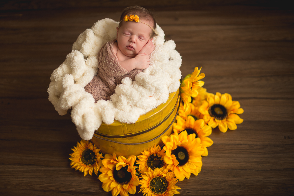 Foto de Newborn da Laura