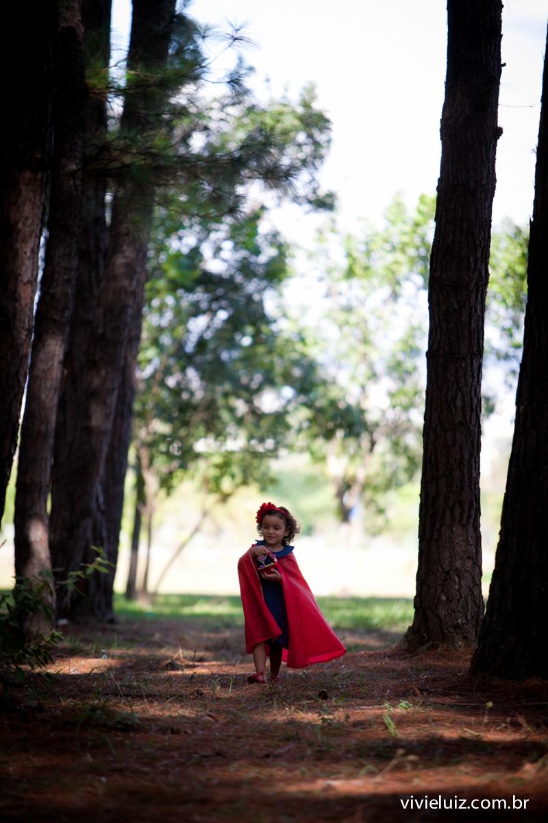 Na floresta caminha chapeuzinho vermelho