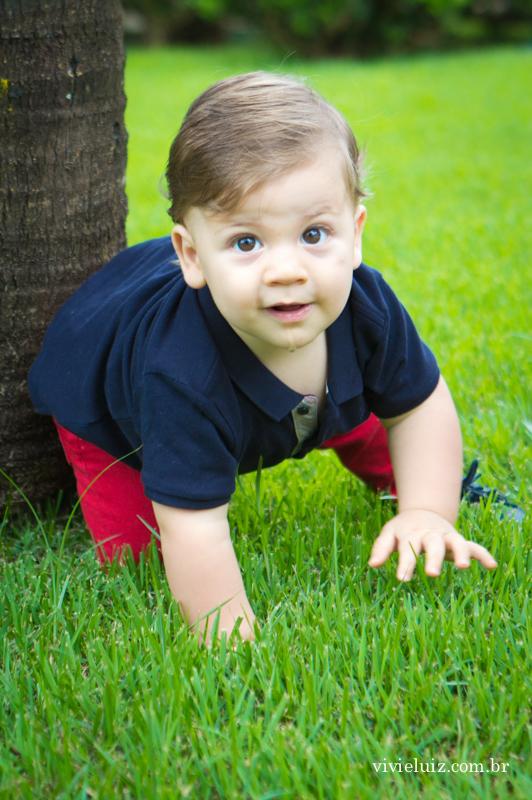 bebe engatinhando na grama