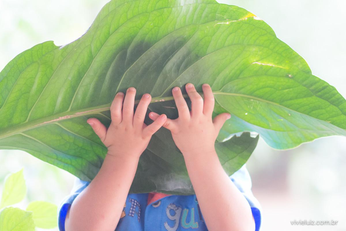 crianças segurando folha grande