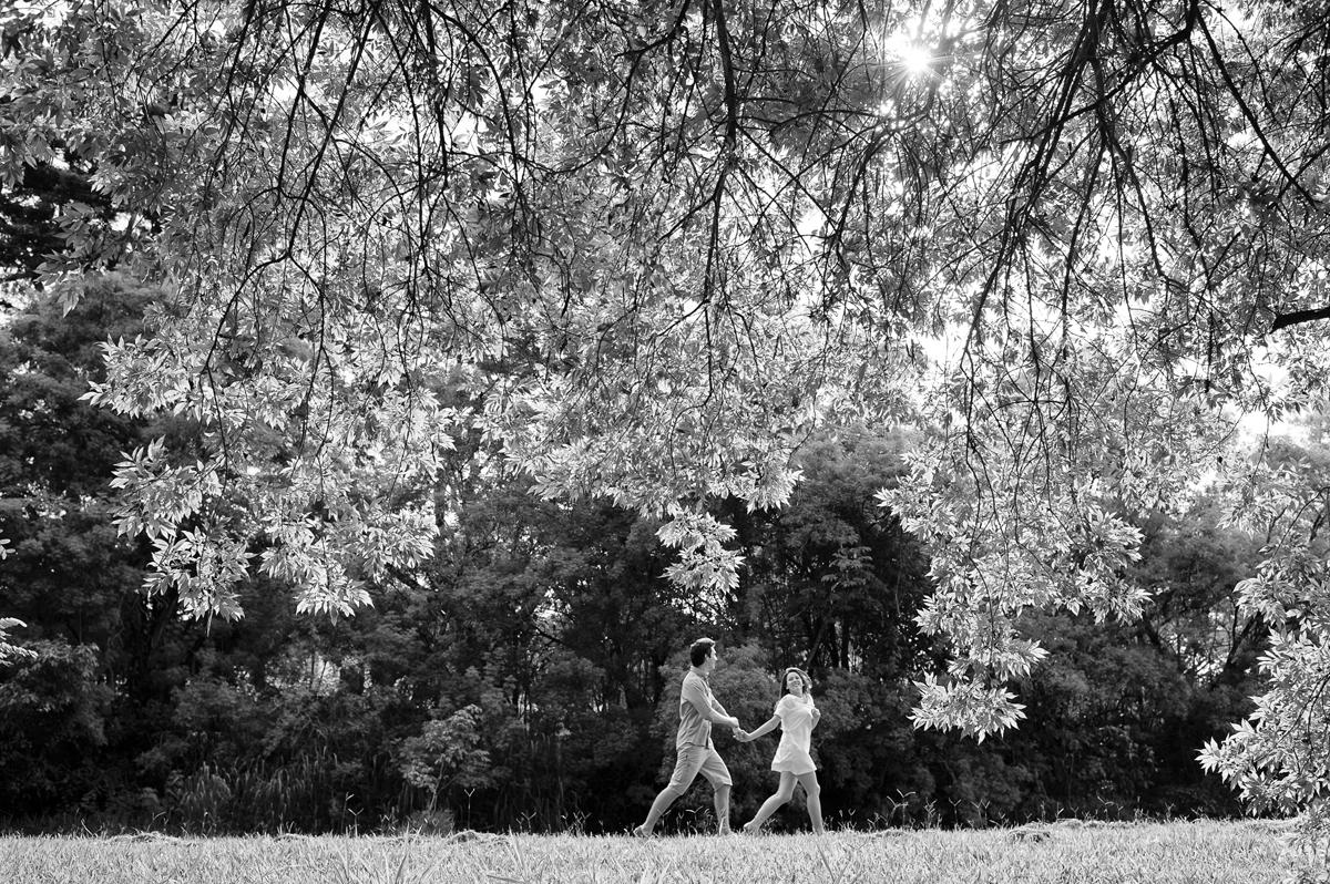 Corrida dos noivos sob as folhas da arvore