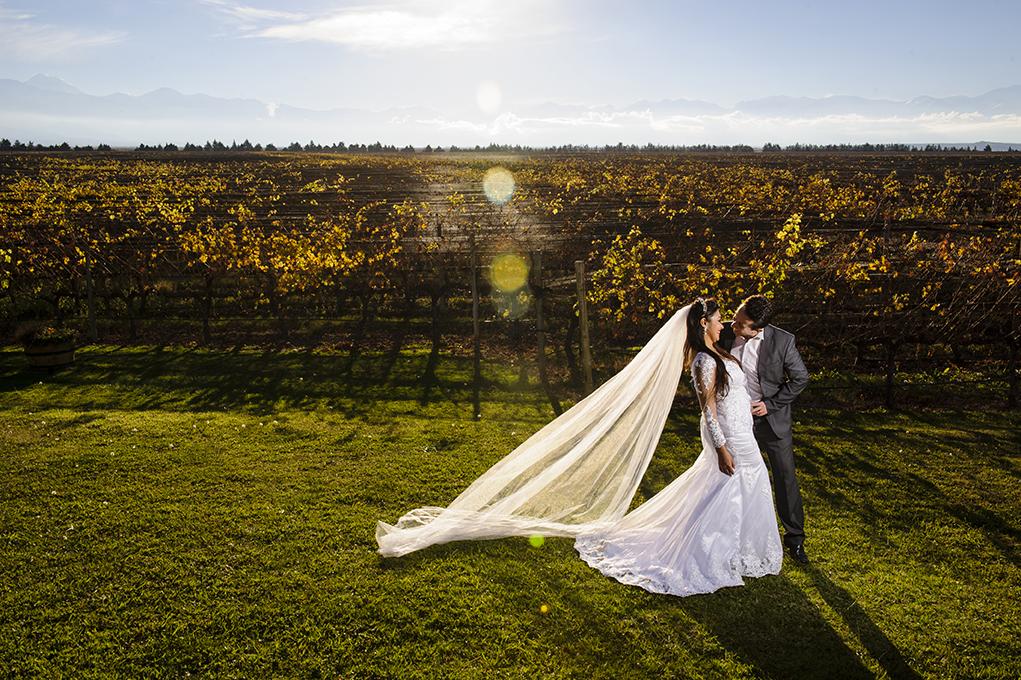 noivo beija noiva na vinícula
