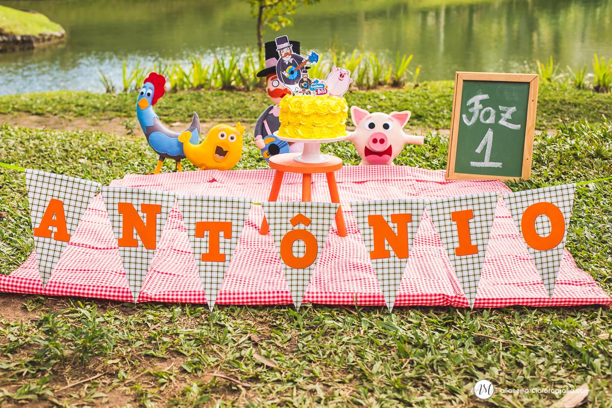 decoração smash the cake