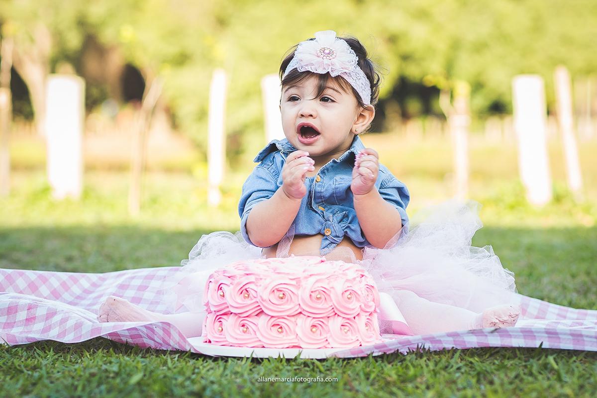 smash the cake da sophia na barra