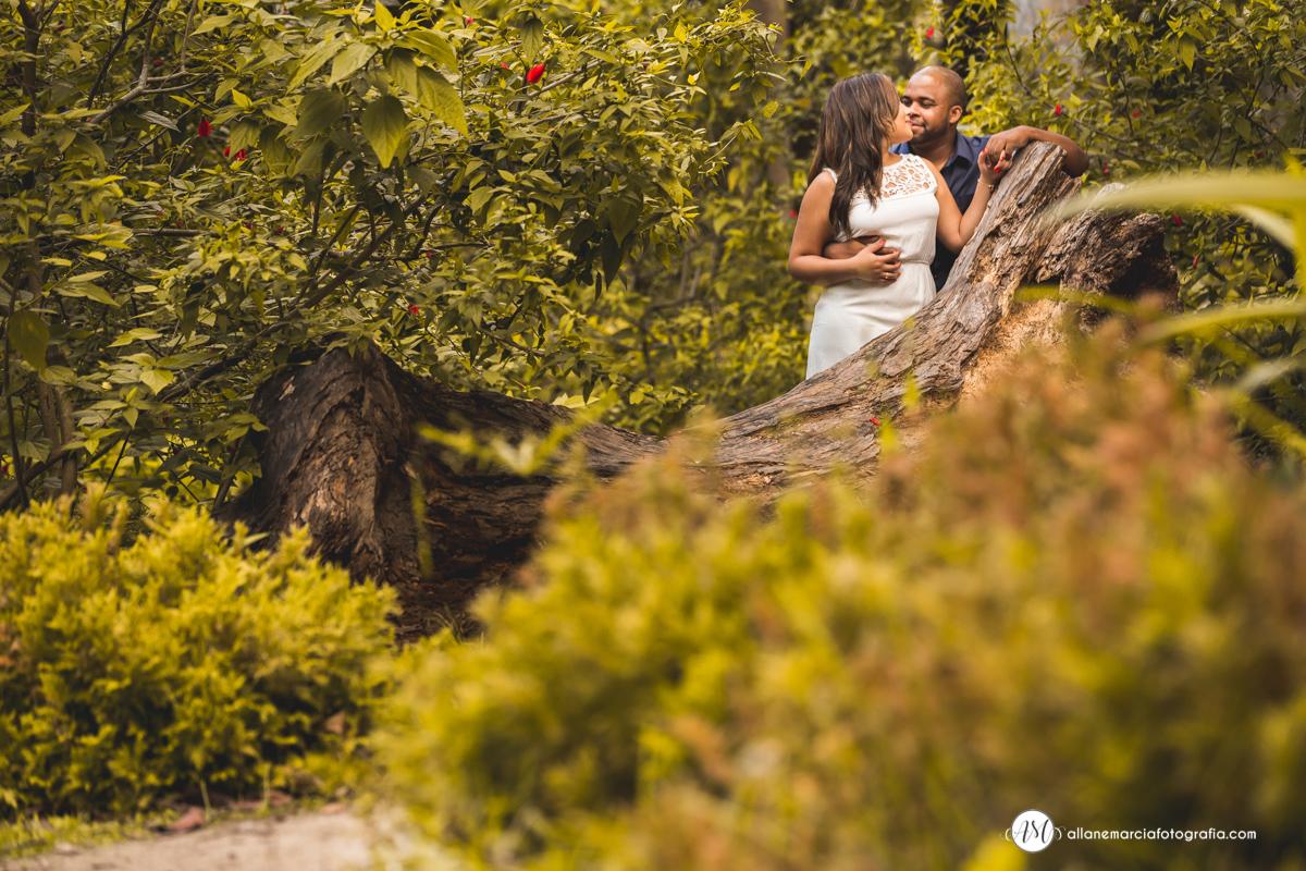ensiao de noivos no campo