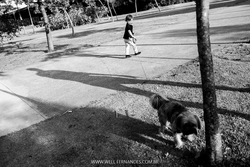 fotografia de pets
