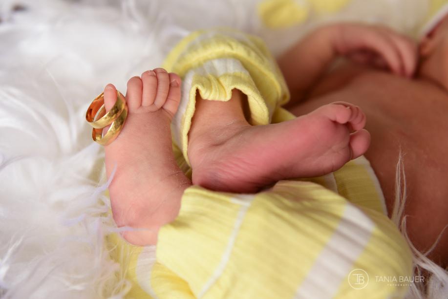 ensaio newborn -São Bento do Sul - Fotografa Tania Bauer