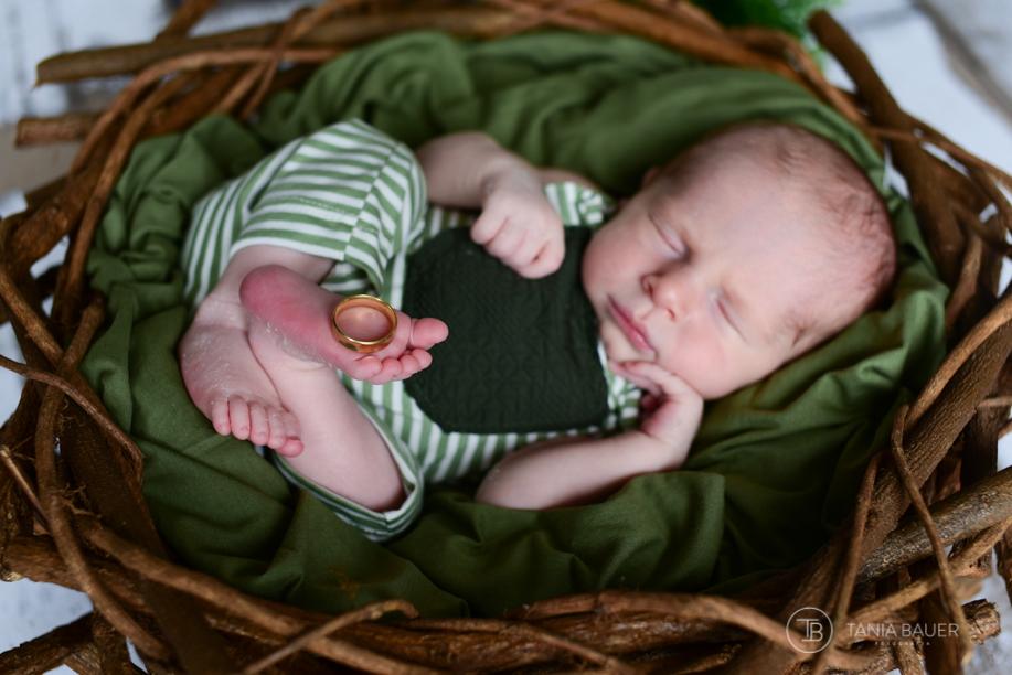 Fotografia newborn, São Bento do Sul, fotografa Tania Bauer
