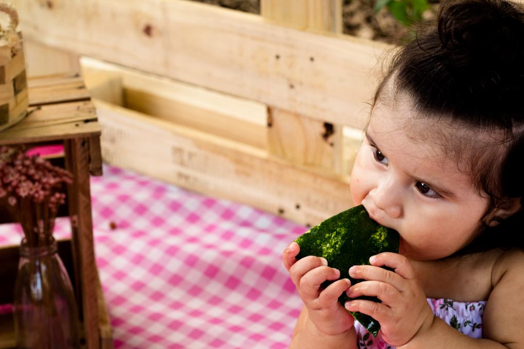 Ensaio Smash The Fruit, aline paim fotografia, ensaio externo, fotografia de familia, fotografo em joinville, bebê comendo melancia, magali