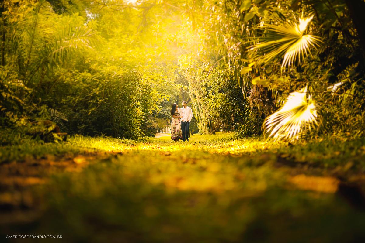 ensaio Botânico, ensaio dos noivos, são paulo SP, fotos dos noivos, workshop fotografia, curso de fotografia, dicas de fotografia, americo sperandio, americo fotografo,  pre casamento,