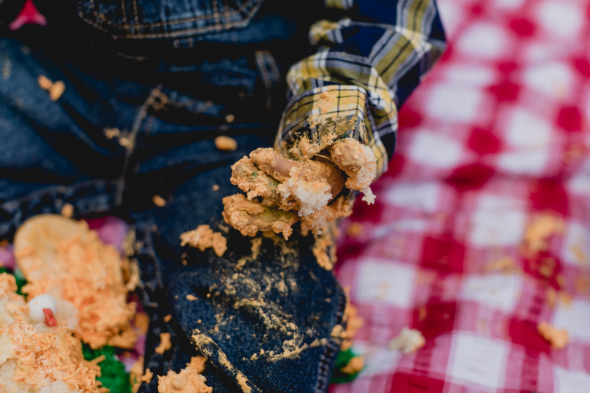 detalhes da mão cheia de bolo no smash the cake