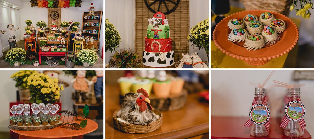 detalhes da mesa do bolo com o tema fazendinha